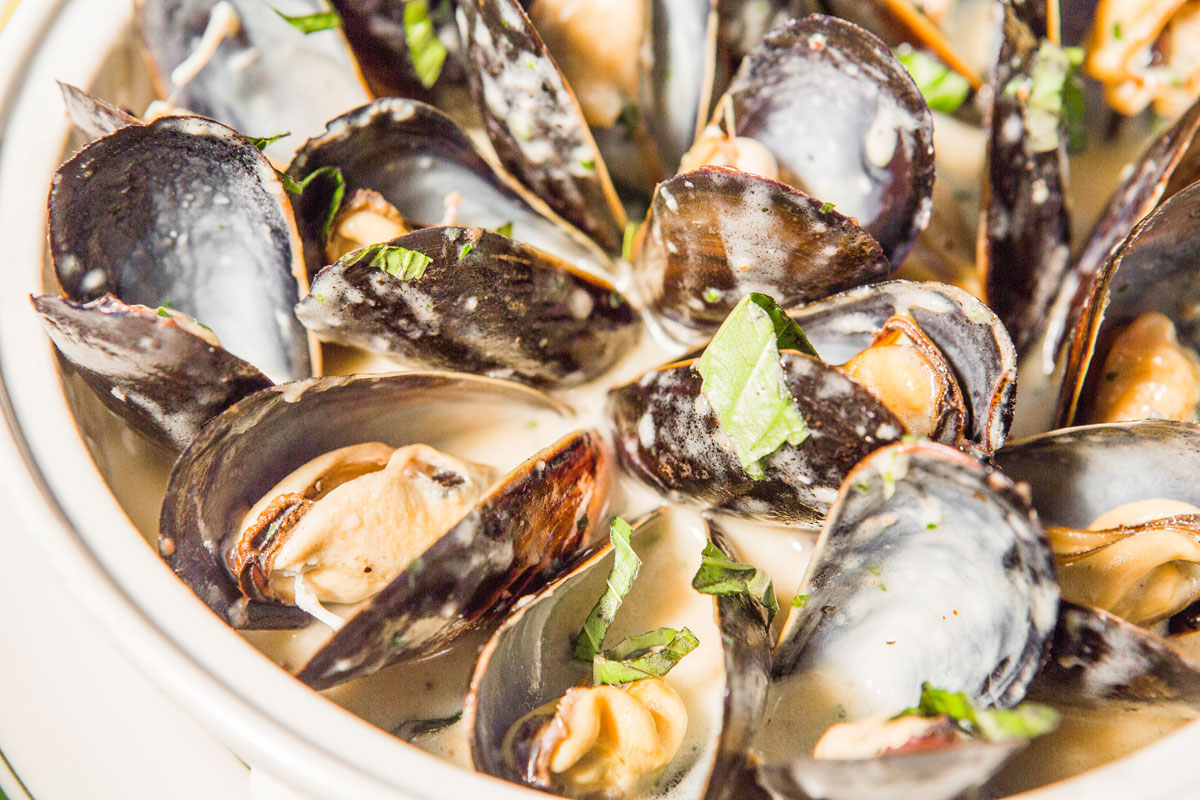 Gallery-Mussels-4K8A9905